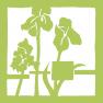 A Color-Adaptive Portfolio Website for an Artist: Portfolio Project Icon - Emerald Seven, An Integrative Design Studio